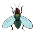 HouseFly - Control